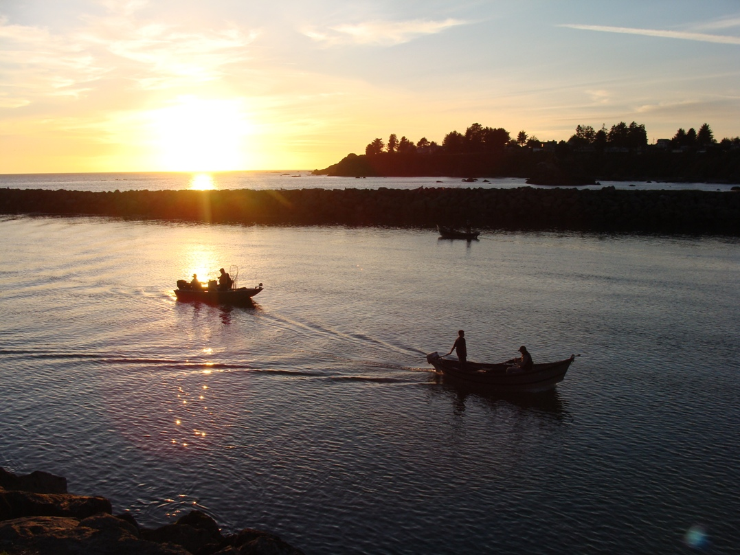Brookings or official website for Fishing brookings oregon