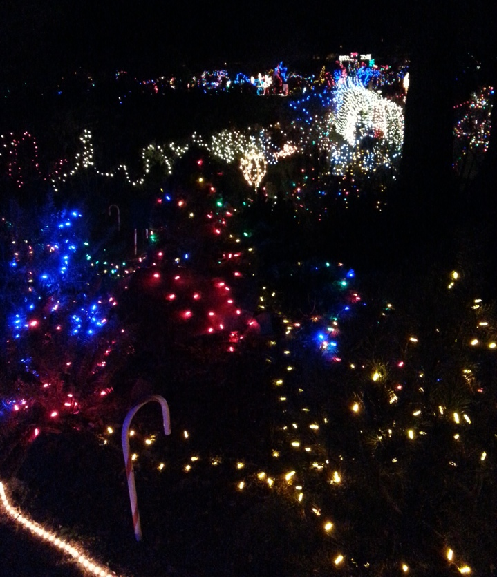 Photo of lights from a high vantage point