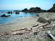 Photo of beach at Chetco Point Park